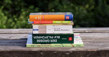 Auf den Bild sehen Sie mehrere Pilzbücher: Grundkurs Pilzbestimmung; Welcher Pilz ist das?; 10 Pilze; Der große Kosmos Pilzführer; Der große BLV Pilzführer; Die geheimnisvolle Welt der Pilze
