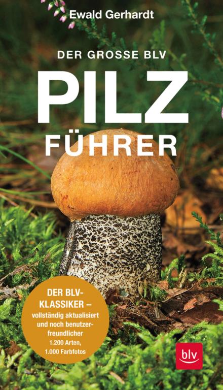 Pilzbuch: BLV Pilzführer