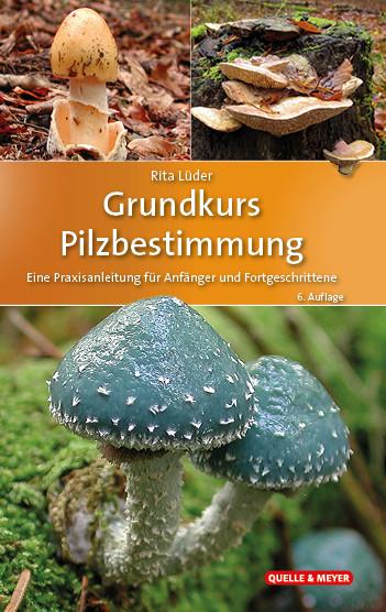 Pilzbuch: Grundkurs Pilzbestimmung
